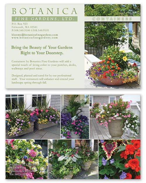 Botanica Postcard